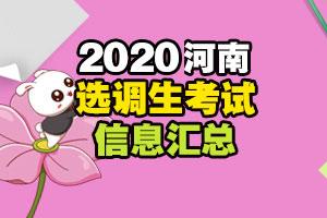 河南选调生招聘考试信息