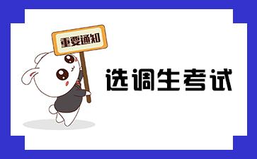 河南选调生考试招考信息